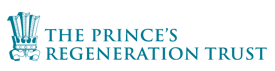 The Princess Regeneration logo